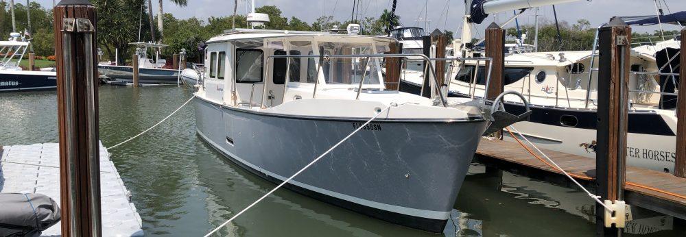 Seapiper35-KIWI